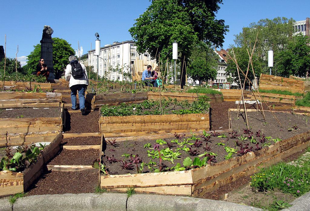 Urban Gardening vor dem Theater in Freiburg